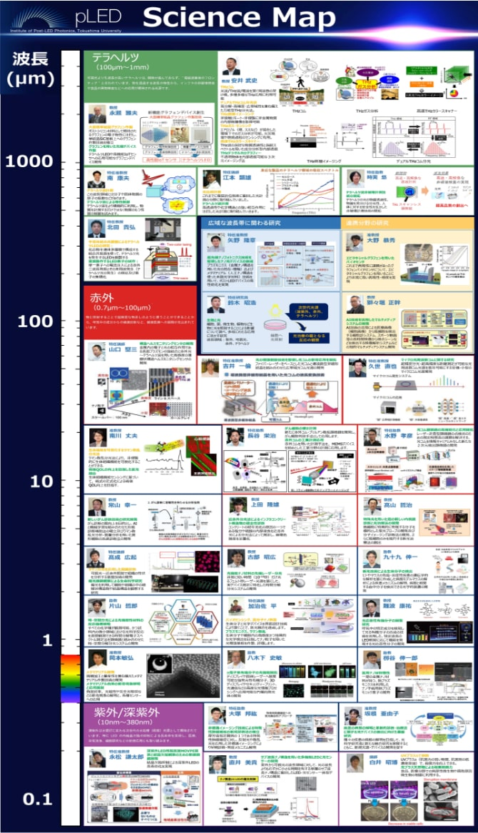 pLEDサイエンスマップ